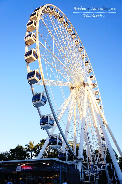 Wheel of Brisbane 01