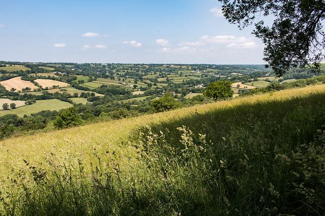 Landscape vista from Dumpdon Hill