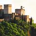 Alhambra Granada Spain by die Augen