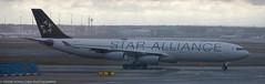 Star Alliance A-340 at FRA