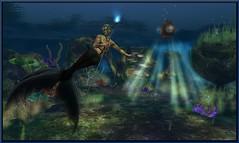 TLG - Erstwhile Reef