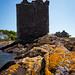 West Kilbride Landmarks (91)