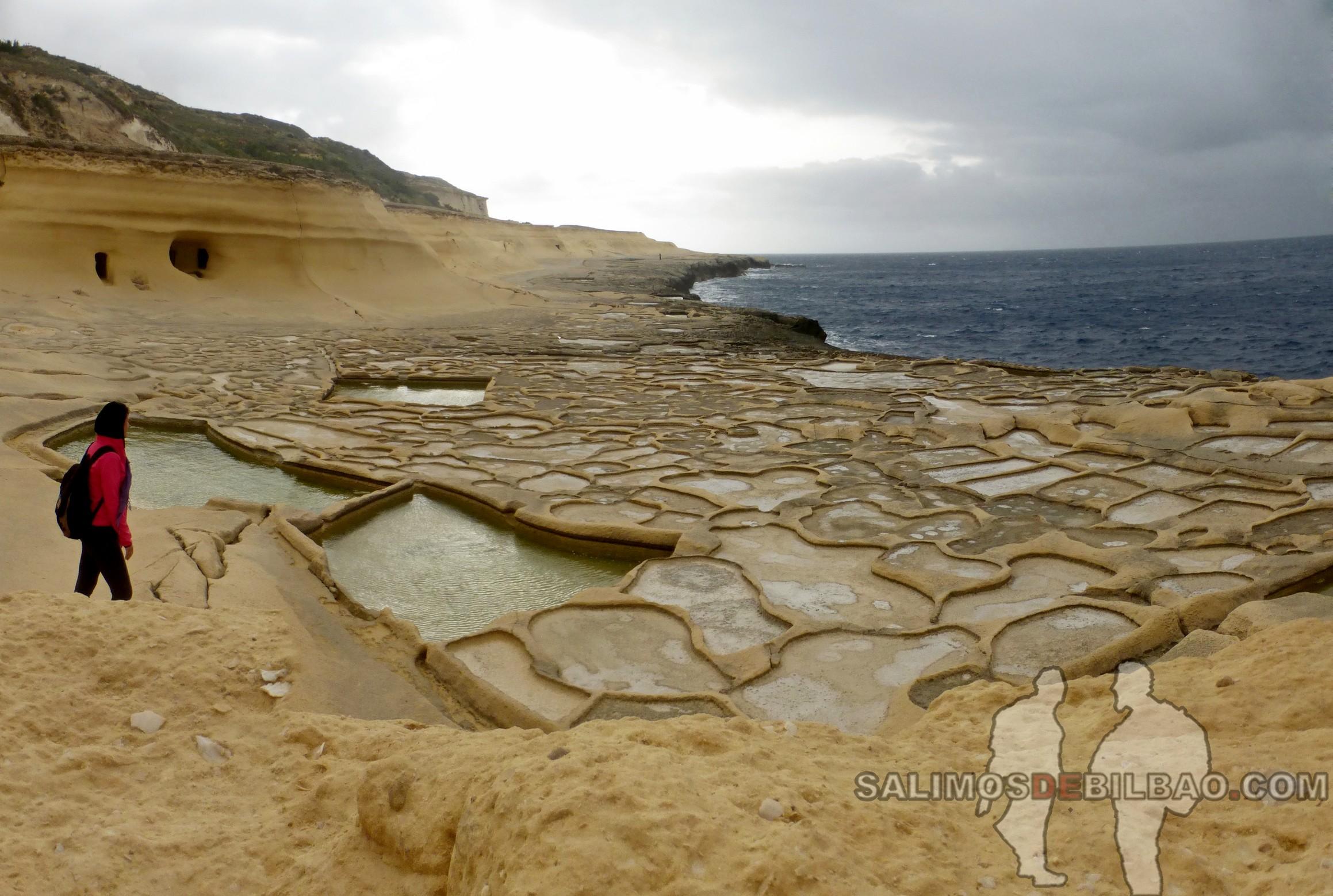 0442. Pano, Salinas, Gozo