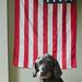 Happy Flag Day! by Kasandra_A
