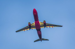 wow flight 162 takes off for reykjavik