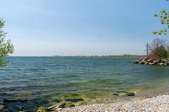 Ashbridges Bay (11 of 18)