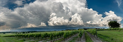 Formation orageuse vignoble cognaçais 03 Juin 2018 - Photo of Jarnac-Champagne