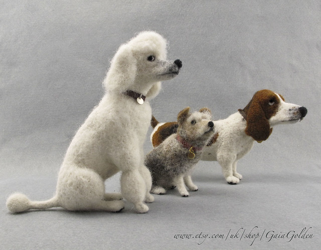 Collection Basset Poodle Terrier  May 2018
