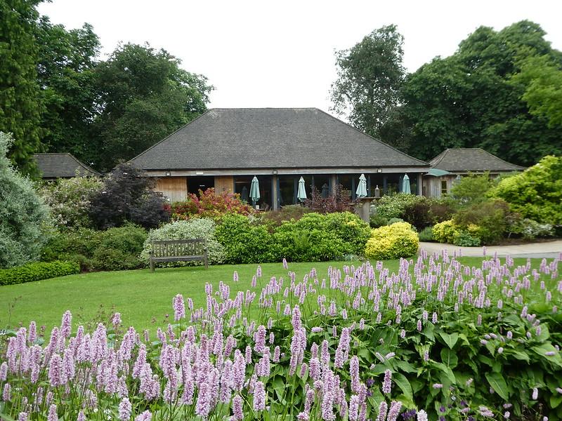 Tearoom, Thorp Perrow Arboretum