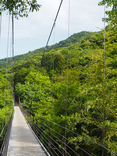 Kubo Suspension Bridge/久保つり橋
