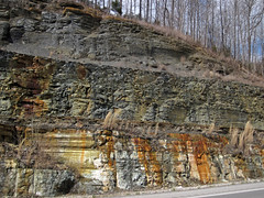 Fort Payne Formation-Chattanooga Shale-Cumberland Formation; Burkesville West Rt. 90 roadcut, Kentucky, USA) 3