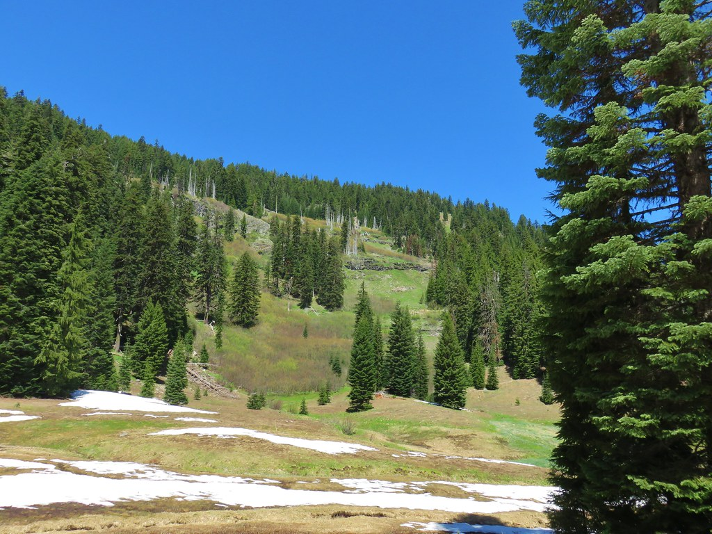 Upper meadow of Buck Canyon