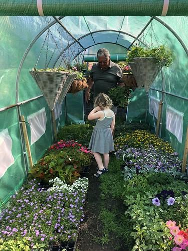 Dad's garden centre