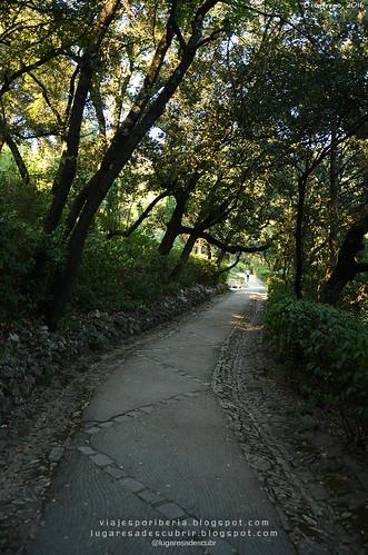 Nîmes (Occitania)