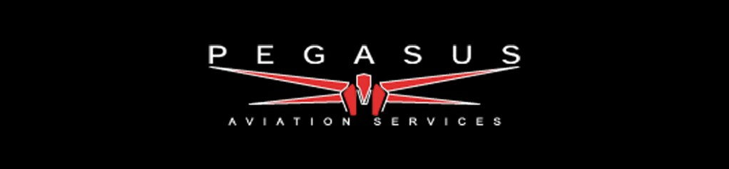 Pegasus Aviation Services job details and career information