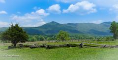 Tennessee USA