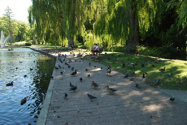 Polson Park (50)