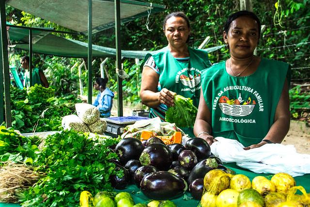 Na Paraíba existem cerca de cinquenta (50) feiras agroecológicas organizadas por assentados da reforma agrária e pequenos agricultores. - Créditos: Thaís Peregrino