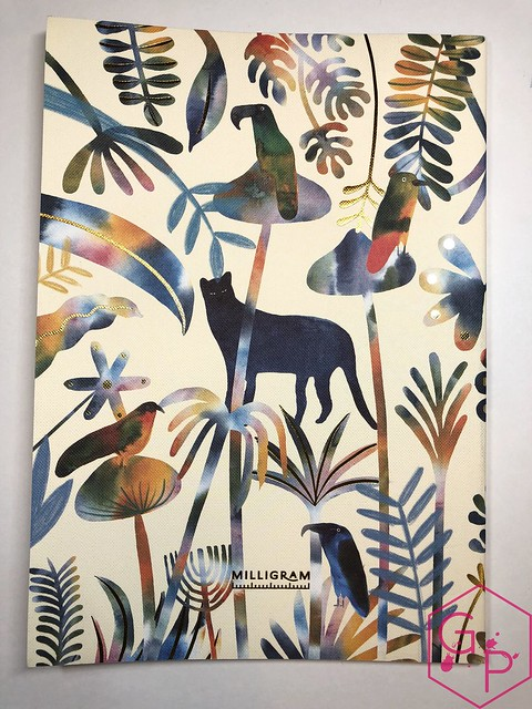 @MilligramStore Notebooks from Marc Martin Kaleidoscope Jungle & Melbourne Museum 15