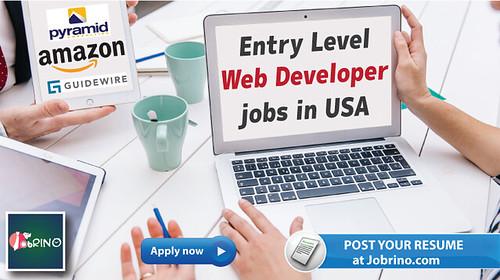 Entry Level Web Developer jobs in USA (2)