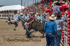 bullfighters cheyenne frontier days  Cody Webster