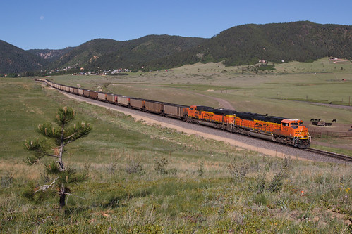bnsf bnsf9122 emd sd70ace palmerlake colorado jointline rampartrange train railroad weentree