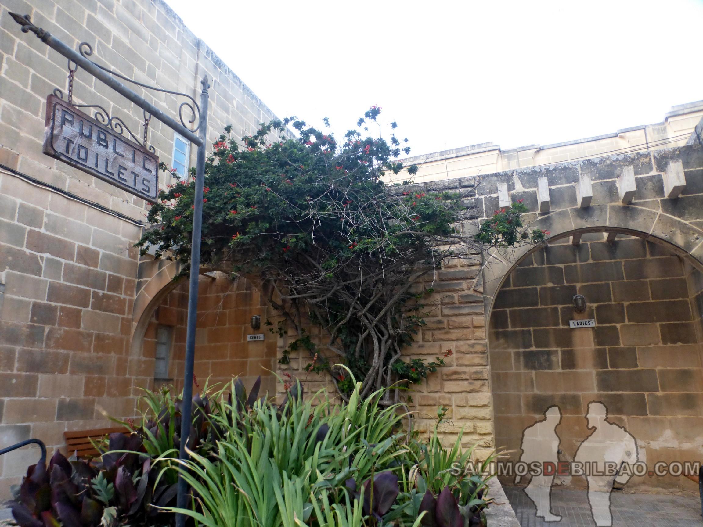 0461. Entrada a baños públicos, Xaghra, Gozo