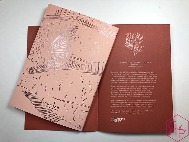 @MilligramStore Notebooks from Marc Martin Kaleidoscope Jungle & Melbourne Museum 10