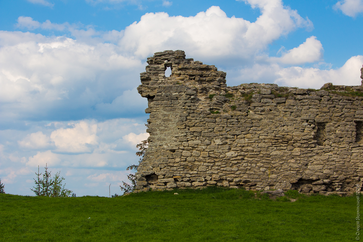 Кременецька фортеця (17)