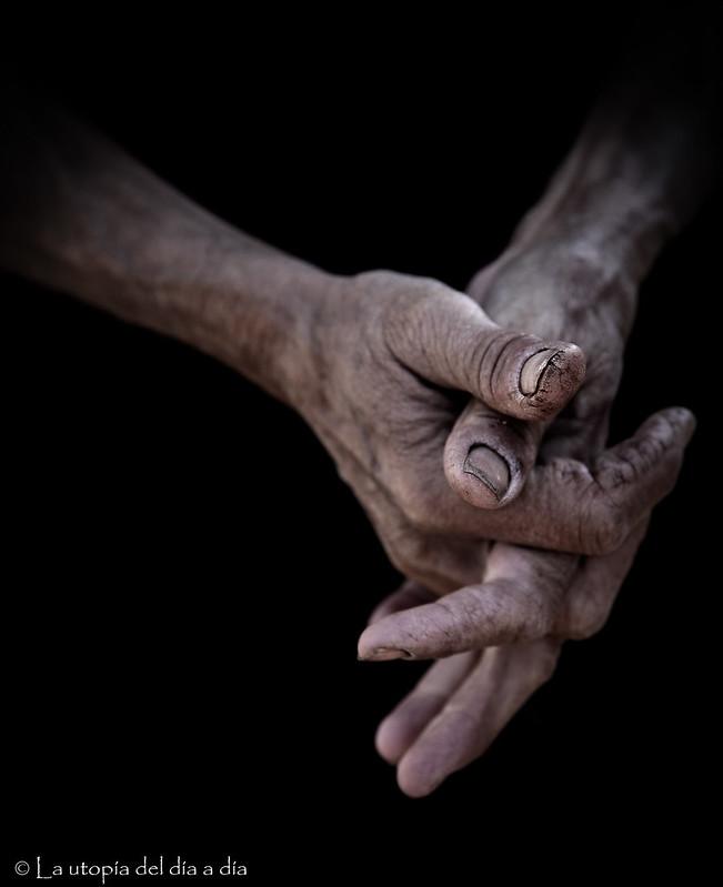 Las manos de la tierra no son utopía, son realidad y son las manos de Consol