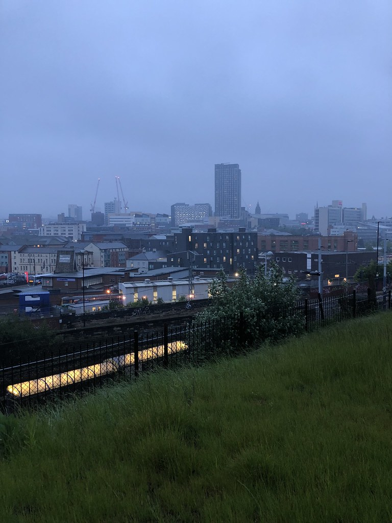 Misty Sheffield
