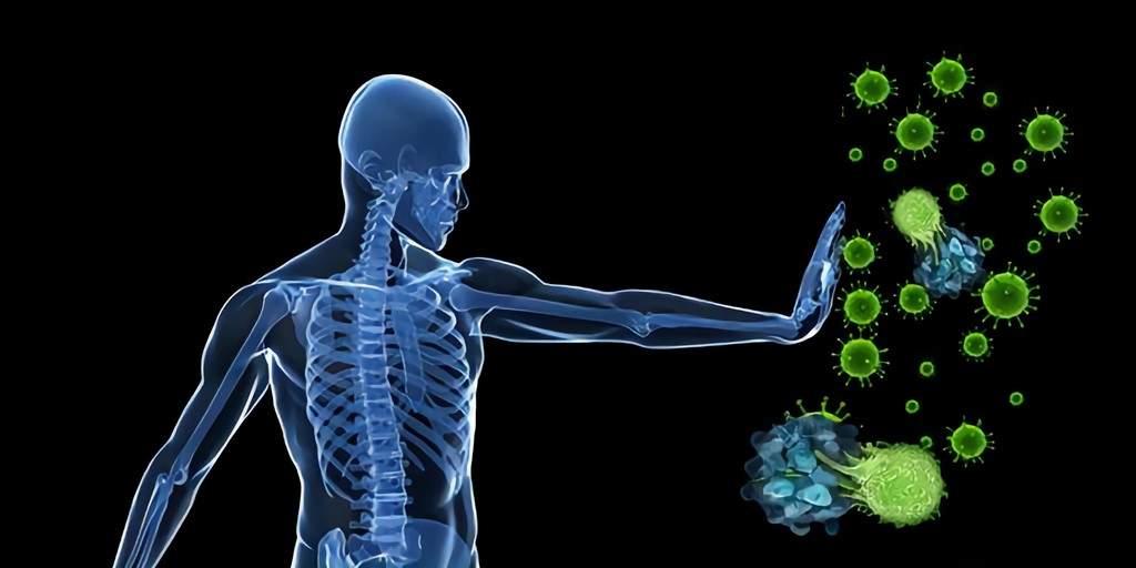 immunothérapie-contre-cancer