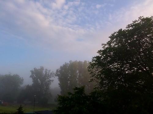 Un matin ...