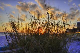 Sawgrass Sunset