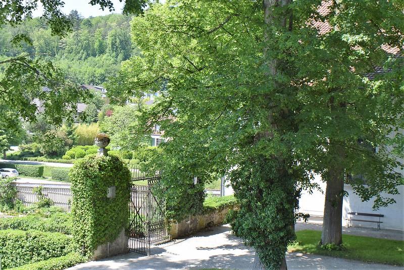 Castle Waldegg 25.05 (12)