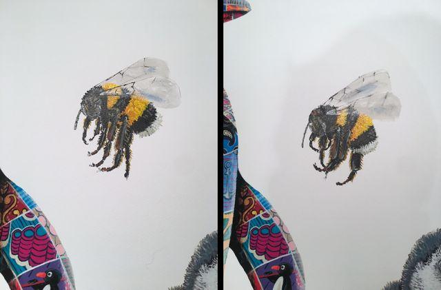 tn_hand variant bees