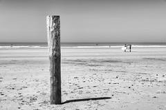 Sur la plage abandonnée... ou presque !