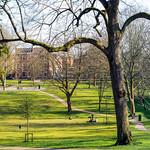 Winckley Square Park Panorama