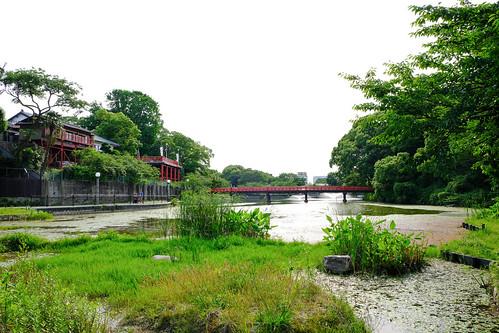 2018.06.03 茶臼山 河底池
