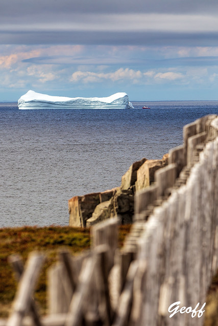 Around the bay in summer... icebergs, whales, puffins and seascapes.