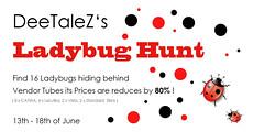 Ladybug Hunt