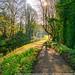 Path along the Calder & Hebble