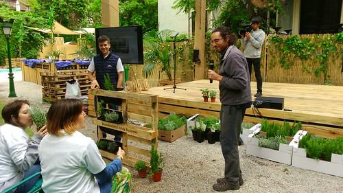Plantas utilizadas en los jardines verticales y participantes en la actividad oliendo alguna de ellas