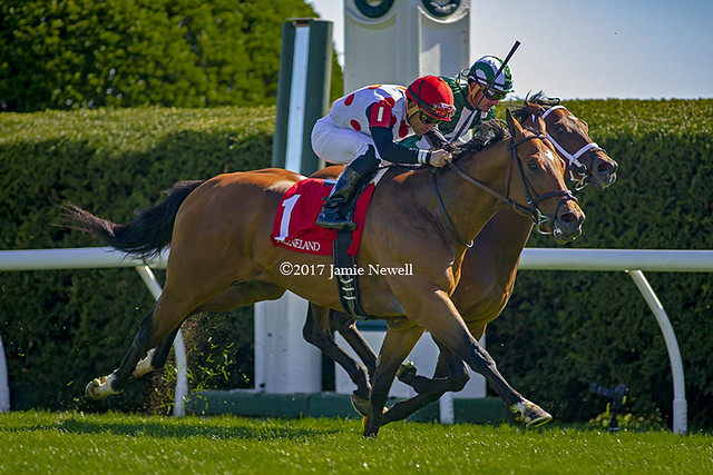 Holding Gold wins the Shakertown Stakes
