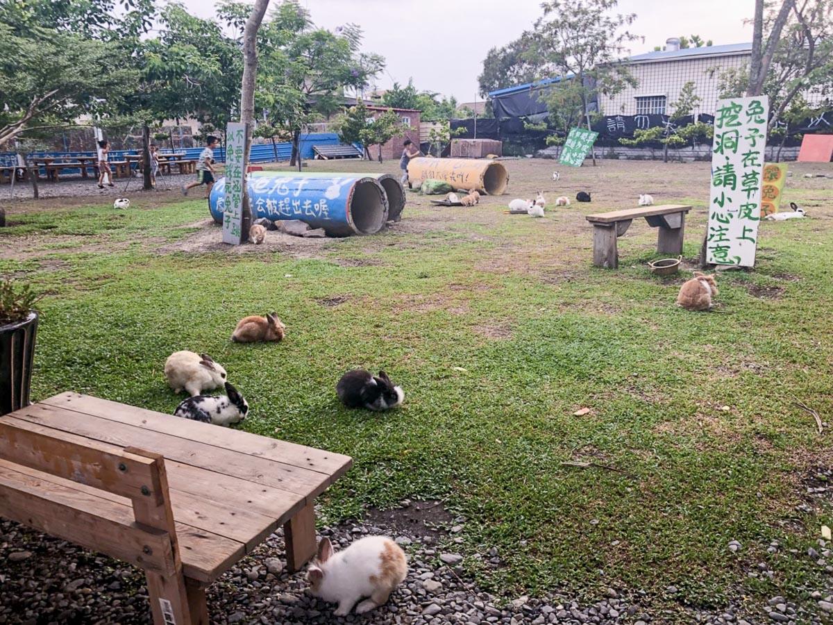 蕭家大院兔子寵物餐廳-15