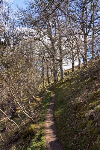 the trail to Divach Falls