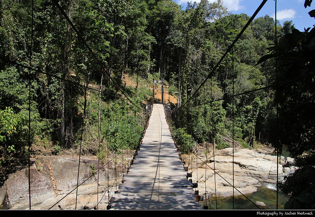 Rope Bridge, Cunca Wulang Canyon, Flores, Indonesia