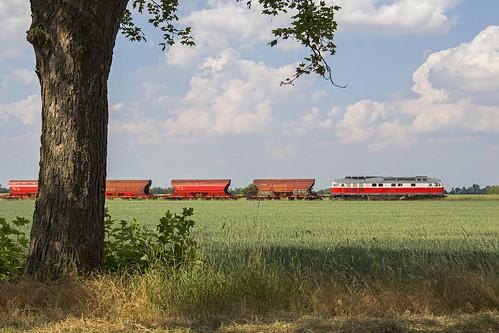 DB Cargo 232 658, Biendorf (D)
