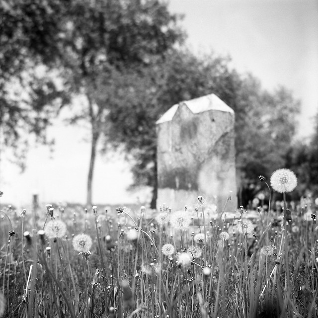 First King Baptist cemetery, Hammertown