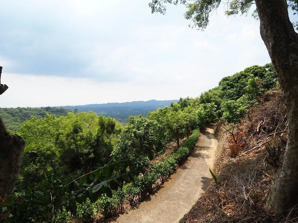 東山仙湖農場 (19)